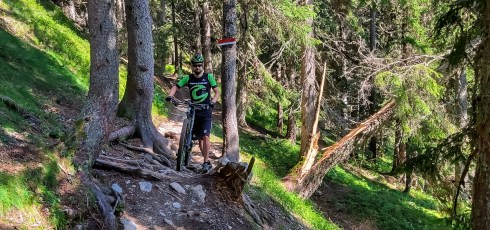 mtb camp Wurzel Trail