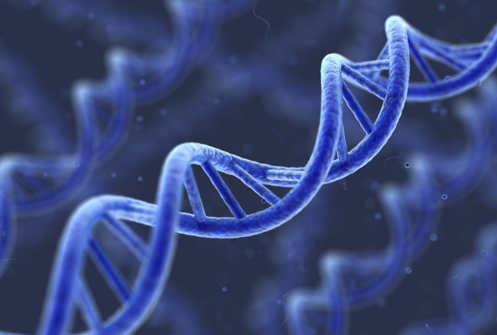 Good Genes: Developing Your Business DNA