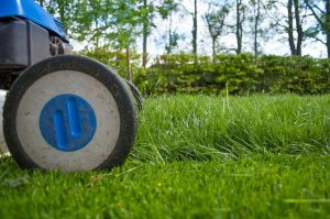 Why Hire a Lawn Cutting Service?
