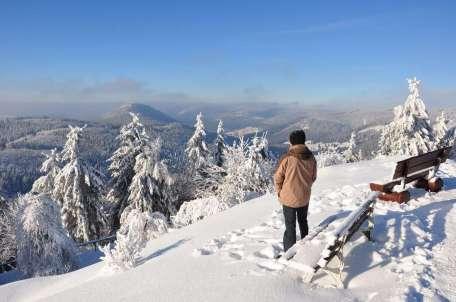 Ausblick vom Ruppber / Thringer Wald
