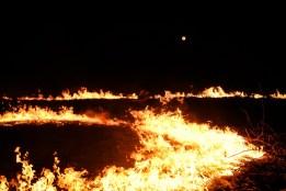 Luna de Fuego (18)