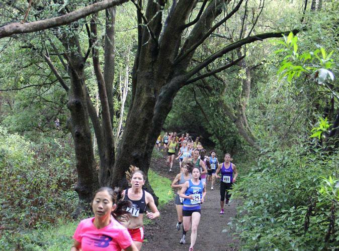 Golden Gate Park Trail