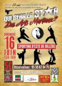Affiche qui sera la star des arts martiaux 20 ans Din Than Kung-fu 2013