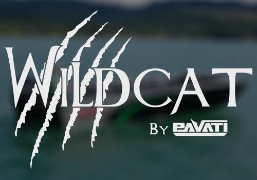 Pavati Wildcat Sled Logo