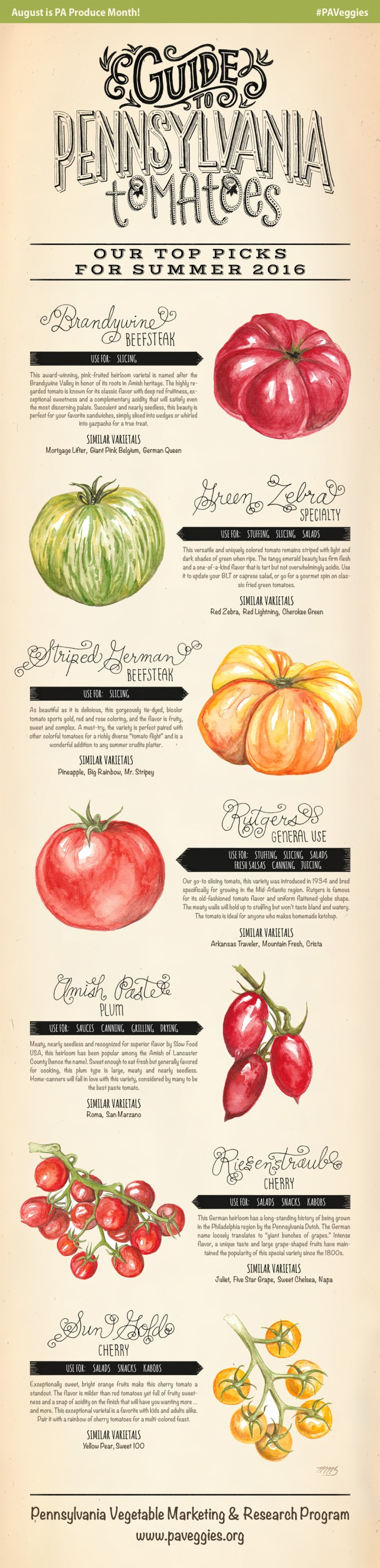 Guide to PA Tomatoes: Our Top Picks for Summer 2016