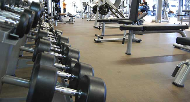 Strength/Free Weights Areas