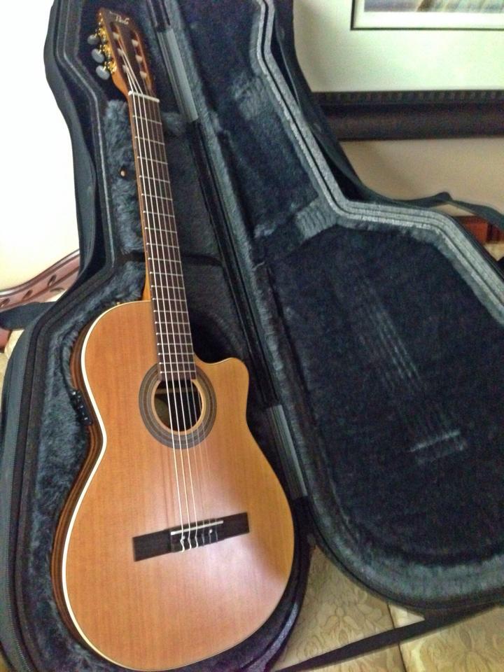 custom guitar case canadian currency pavlo. Black Bedroom Furniture Sets. Home Design Ideas