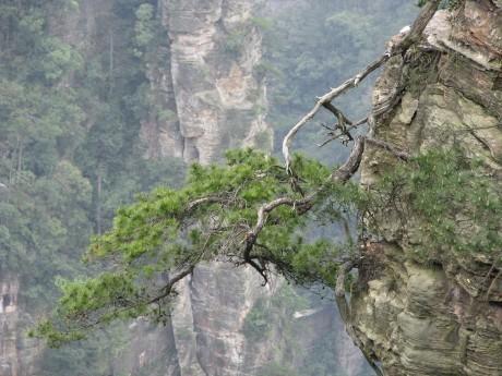 Zhangjiajie - totu kręcono Avatara 45