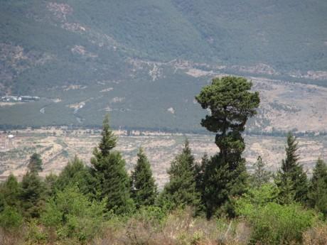 Lijiang - Baisha - rower - góry 3