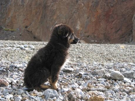 Nam-Tso - święte jezioro tybetańskie 23