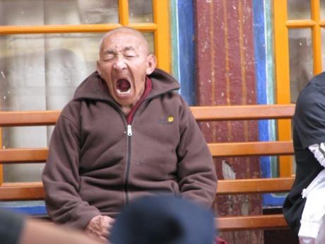 Tybet - powrót 6