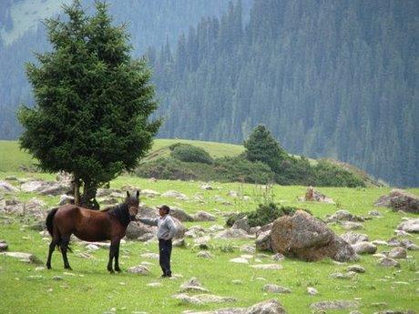 Treking wgórach Tien Shan (Kirgistan) 4