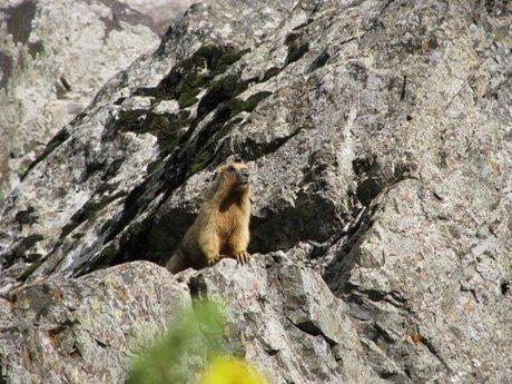Treking wgórach Tien Shan (Kirgistan) 34