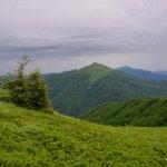 Główny Szlak Beskidzki; Połonina Wetlińska - Wołosate 1
