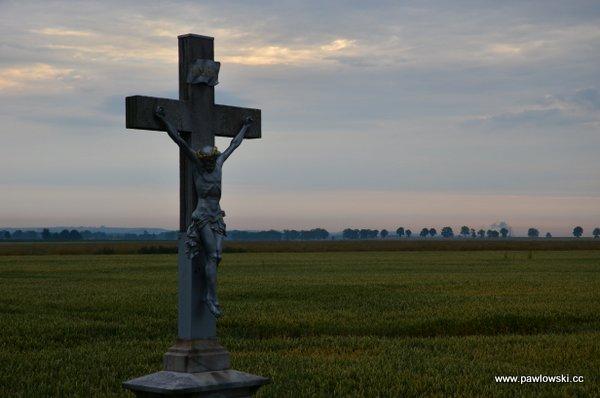 Główny Szlak Sudecki; Piotrowice Nyskie - Schronisko PTTK Pod Biskupią Kopą