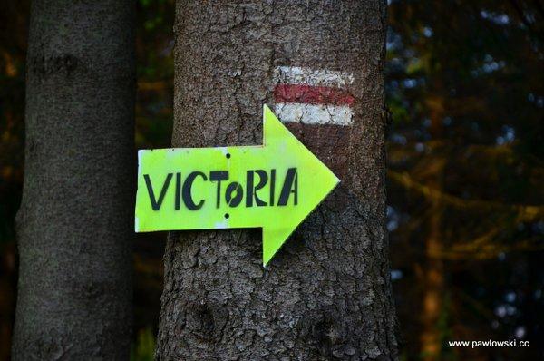 Główny Szlak Sudecki; Górski Dom Turysty podBiskupią Kopą - Prudnik PKP 12