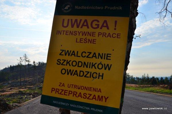 Główny Szlak Sudecki; Górski Dom Turysty podBiskupią Kopą - Prudnik PKP 15