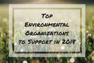 Amazing Environmental Organizations Need Donations