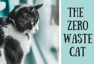 The Zero Waste Cat
