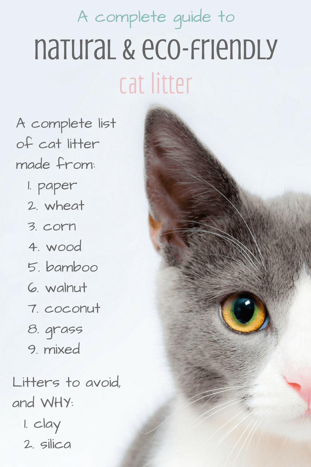 eco-friendly cat litters: a guide to the best natural cat litter