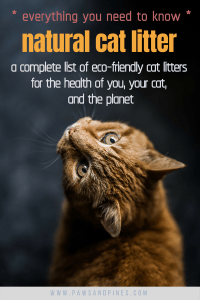 A cat looking backwards with text overlay: everything you need to know - natural cat litter - a complete list of eco-friendly cat litters for the health of you, your cat, and the planet