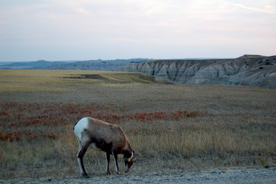 Sunset in The Badlands National Park South Dakota