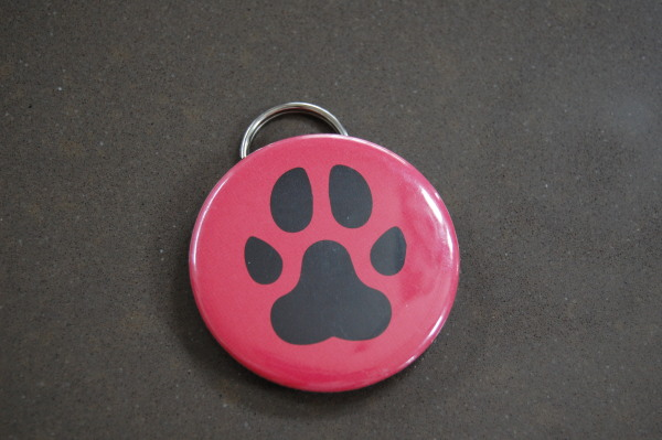 Beer Paws Bottle Opener Review
