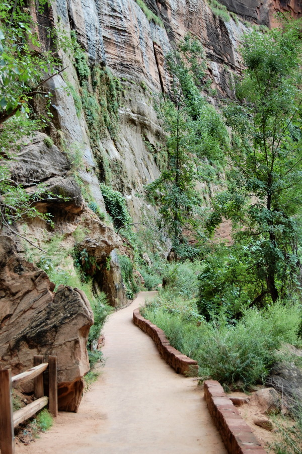 easy hiking in Zion National Park