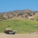 San Diego Zoo Safari Park, Escondido California