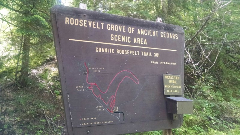 Granite Falls Trail 301