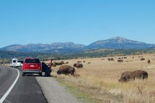 Yellowstone National Park Shows Off In The West Thumb