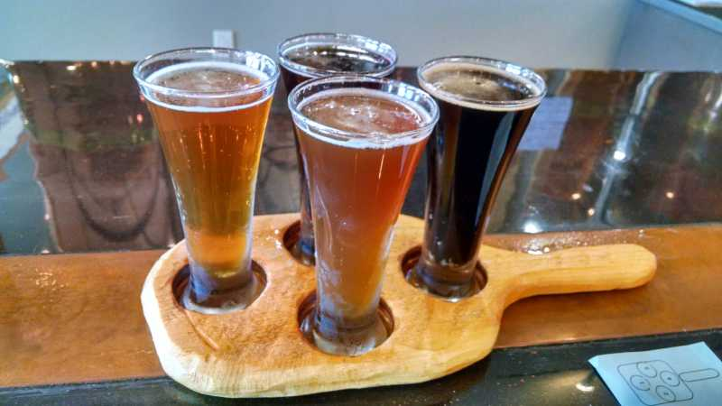 Paws For Beer Travel Round Up 2016