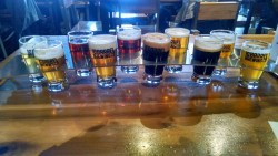 Tasting The Gamut At 10 Barrel Brewing Boise Idaho