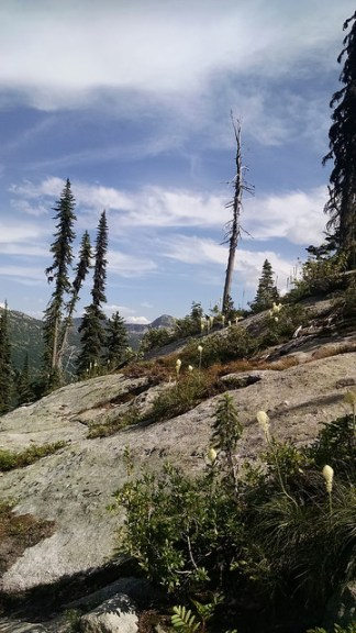 Dog-Friendly Hikes In North Idaho
