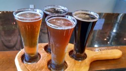 Why It Is Important To Drink Local Beer