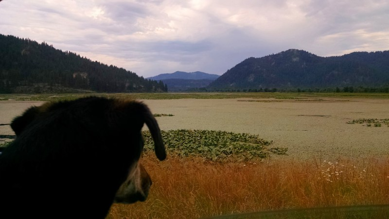 Coeur D' Alene Scenic Byway