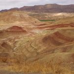 Visiting Dog-Friendly Painted Hills Oregon