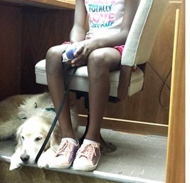 Paws'itive Teams' Kiwi Service Dog with Child