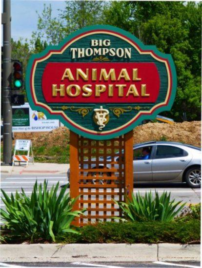 Big Thompson Animal Hospital sandblasted gold leafed monument sign Loveland CO