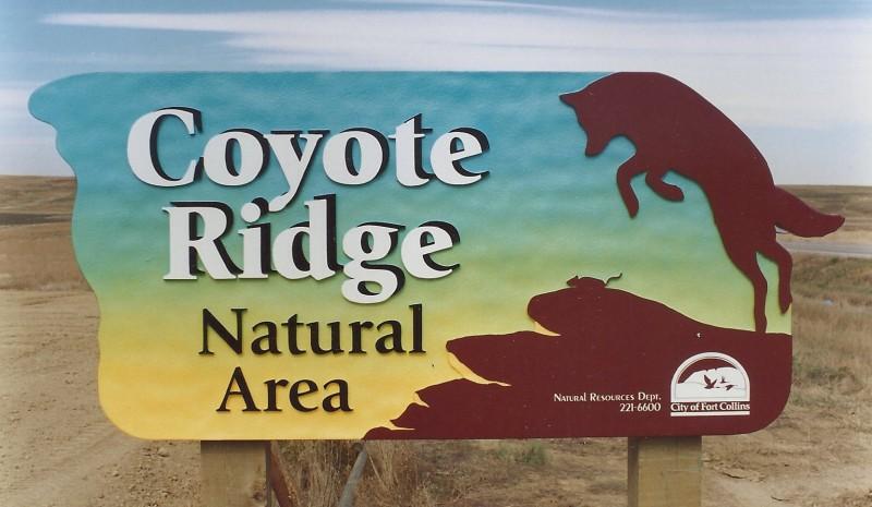coyote-ridge