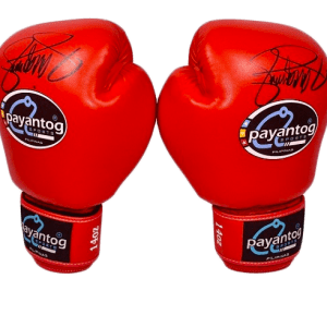 Boxing Gloves Snap Classic