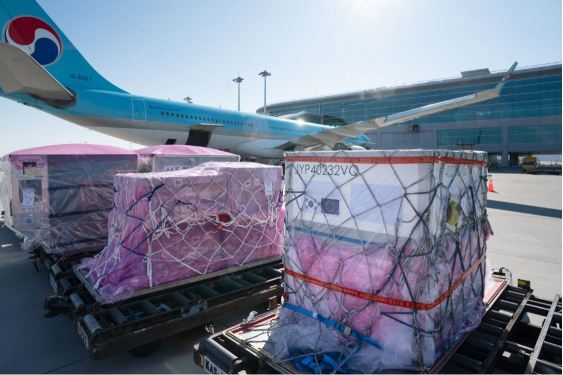 South Korea cools dry ice rules to boost vaccine air transport