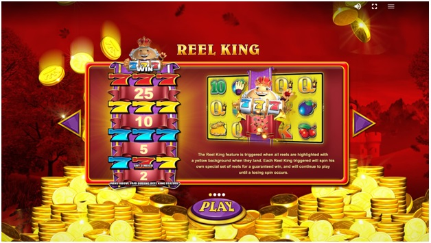 How to play Reel King Mega