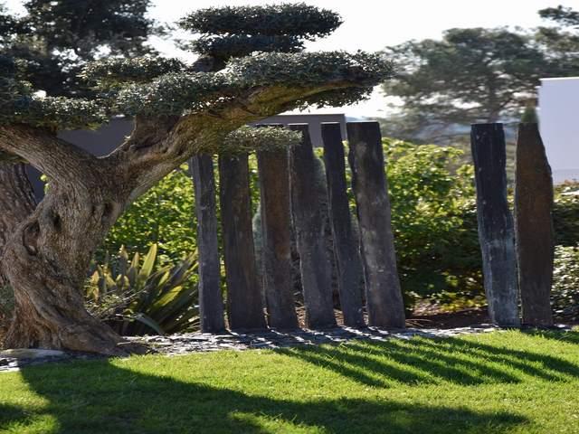 Jardin Japonais Amenagement Exterieur Paysagiste Jardin