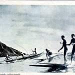 WAIKIKI-surf-culture-pays-basque
