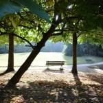 gernika-ville-pays-basque-monument-parc-banc