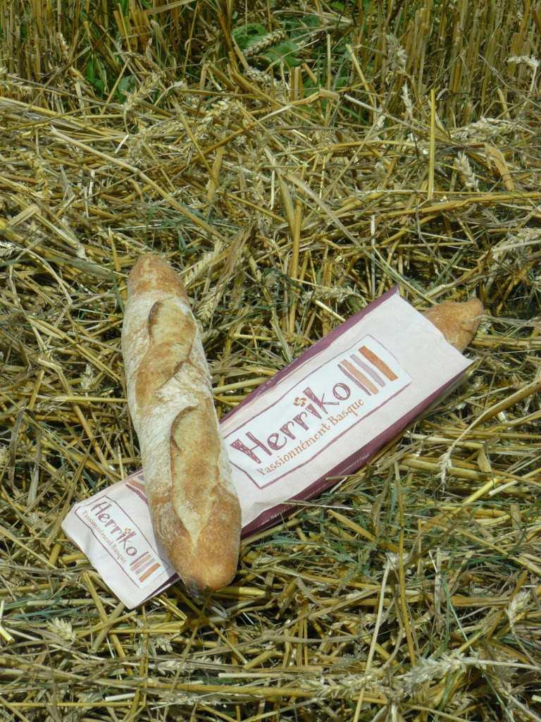herriko-blé-paysbasque-baguette-
