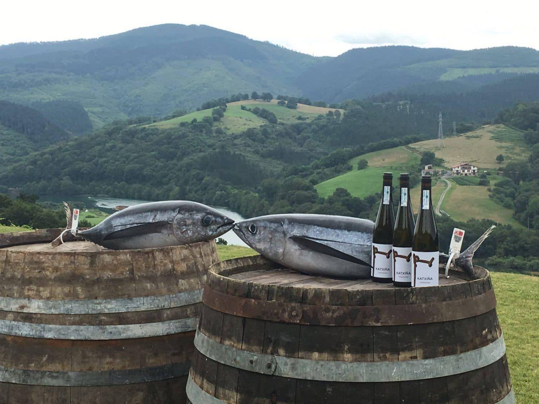 bodega-katxina-poisson-vin-pays-basque