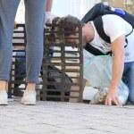 cleanwalker-biarritz-pays-basque