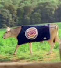 pazarlamacanavari_burgerking.jpg